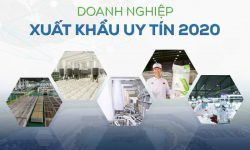 """5 subsidiaries of An Phat Holdings are honored to be """"Reliable Exporters"""" in 2020"""